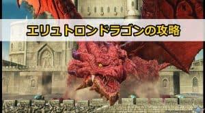 エリュトロンドラゴン(壊城に舞う紅き邪竜)の内容と攻略