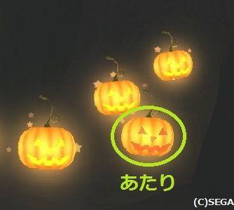 かぼちゃのEトラのあたり
